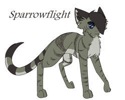 Sparrowflight by ShiningFeline