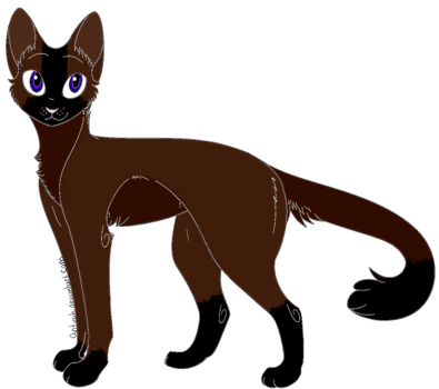 Cat Adoptable {SOLD} by Foreveredshadowed
