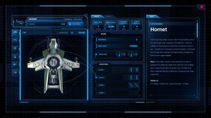 Star Citizen - Roberts Space Industries Ship UI by z-design