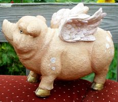 Flying Pig 6 by Penny-Stock