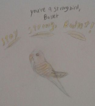 Stay Strong Bullet by ParakeetTheIceWing