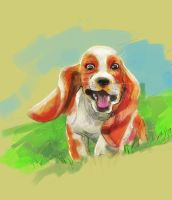 Running Basset by ComeAlight