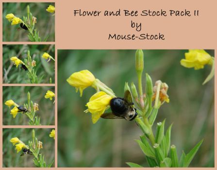 Flower and Bee Stock Pack II by Mouse-Stock