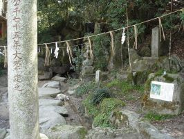 Shinto Cat by roquelaure