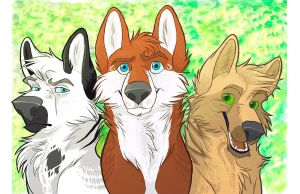 COTW - Three Brothers by Graystripe64