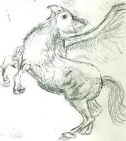 Hippogriff Sketch by Catherine1992
