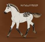 A2025 Nutella foal by Moon-illusion