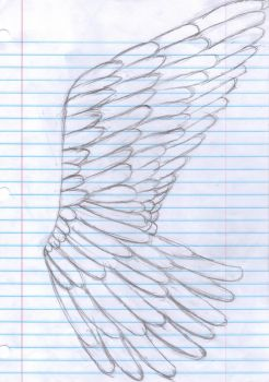 Angel wing by Emo-cat9