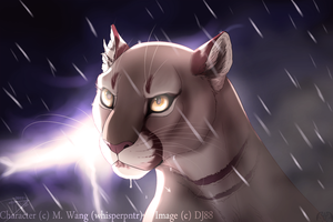 A Whisper in the Storm by DJ88