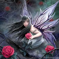 Rose Fairy by Ironshod