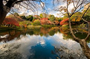 Japanese Garden by FloatGarden
