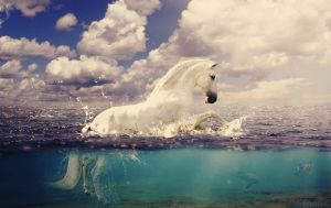 Horse leap in the Water by Nikola096