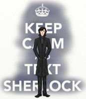 Keep Calm and Text Sherlock by SherlockROCKSmySOCKS