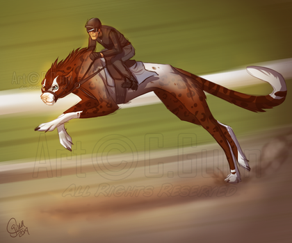 Race Traning - Fly by InstantCoyote
