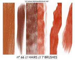 PHOTOSHOP BRUSHES : hairs by darkmercy