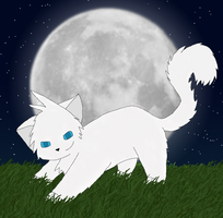 Request: Cloudtail by Moon-feather