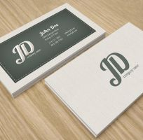 Professional Retro Business Card by env1ro