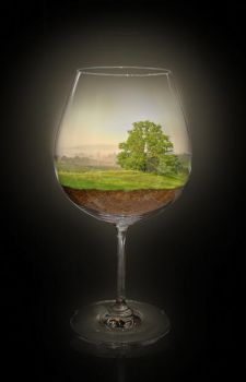 Landscape in a glas - Summer by Sagitarii