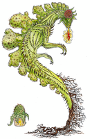 Cactus Dragon by Avokad