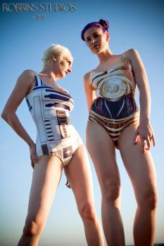Droids You Are Looking For by illiara