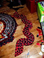 coral  snake by scixual