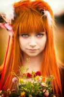 Horo in Field #4 by andrewhitc