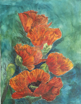 Vibrant Poppies by Silenna86