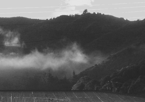 Foggy mornings 1 by TheLastHeart