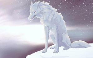 White wolf by UniQuest