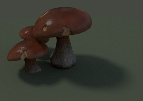 Mushrooms by FredrikH
