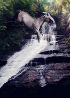 Song of the Lonely Mountain by idream-of-equine