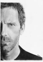 Hugh Laurie - House MD by MeikeZane