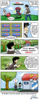 The Exclamation Mark by pokemon-master