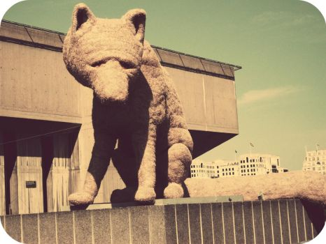 The South Bank Fox by overteccentricity