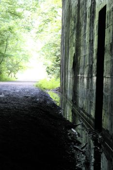 Swede Tunnel6 by T-Fire