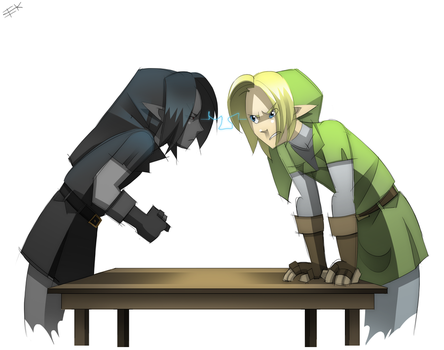 Link Vs DLink Staring Contest by WhiteFoxCub