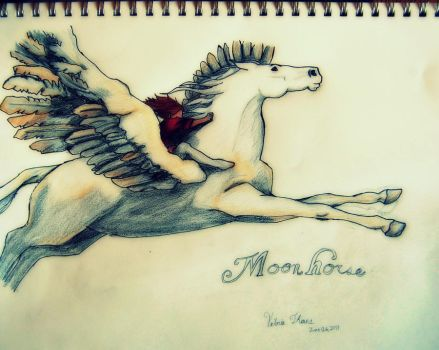 Moon Horse by ladyburrfoot