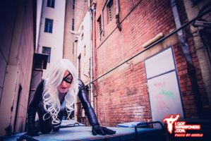 Black Cat is on the prowl by igotsuperpowers