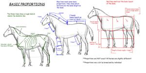 Horse Tutorial:Proportions by vixentheangryfox