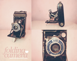 Genevieve: My Folding Camera by Kezzi-Rose