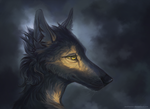 Sun through the clouds by WolfsECHO