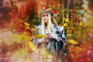 Thranduil original Cosplay 04 by Megane-Saiko