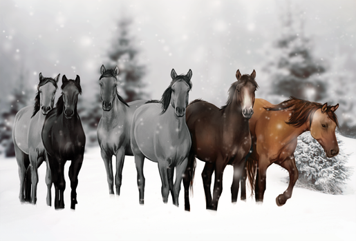 Grayscale Winter Auction by feverpaint