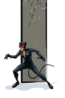 Catwoman by universe-K
