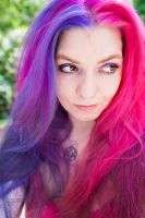 Purple/Pink by lizzys-photos
