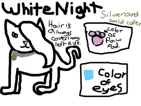 WhiteNight's Charictor Sheet. by WarriorsProductions