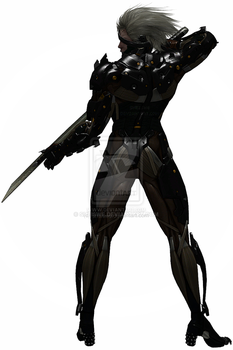 Raiden by sheiswe