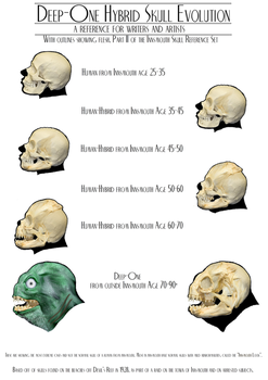 Deep One Hybrid Skull Evolution II (with outlines) by vonmeer