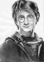 Harry Potter by hagrid78