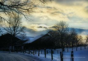 Winter impressions 4 by eschlehahn